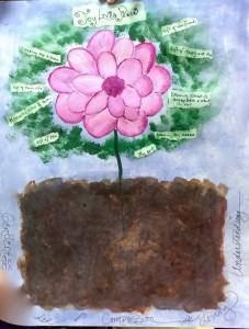 lotus-wisdom